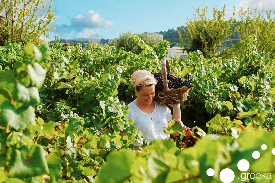 agrotourism in greece