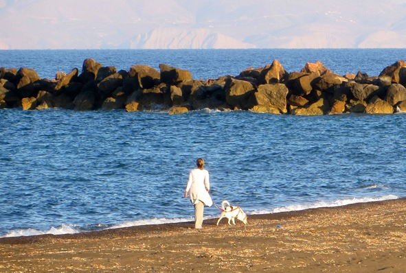 Rules for traveling with pets in Greece
