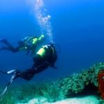 Greek island activities: diving