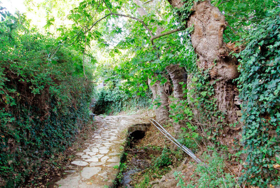 Things to do #10: Hiking in Potamia