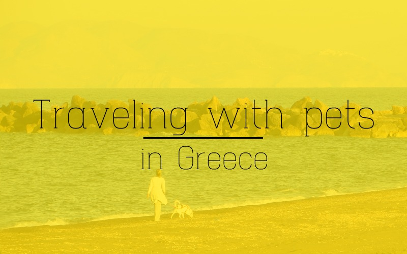 Things to know for traveling with pets in Greece